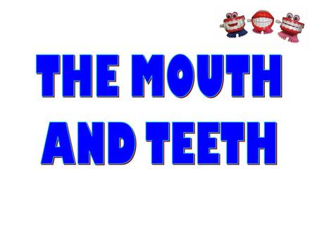 THE MOUTH AND TEETH.
