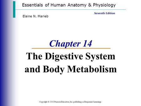 Chapter 14 The Digestive System <strong>and</strong> Body Metabolism