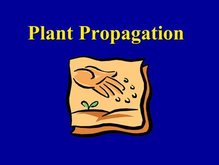 Plant Propagation. Containers Plastic is best!Plastic is best! –Easy to clean and re-use –Durable Can use clayCan use clay –heavy, breakable, & salts.