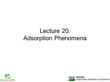 Lecture 20. Adsorption Phenomena