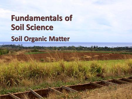 Fundamentals of Soil Science