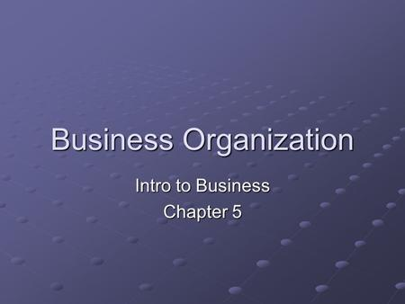 Business Organization Intro to Business Chapter 5.