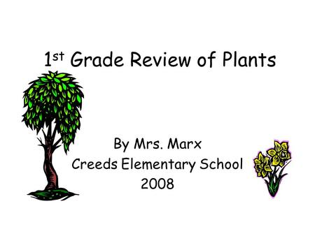 1st Grade Review of Plants