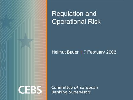 Regulation and Operational Risk Helmut Bauer | 7 February 2006.