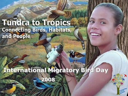 International Migratory Bird Day 2008. What is HABITAT? (hab-i-tat) An area where an animal or plant finds the food, water, shelter, and living space.