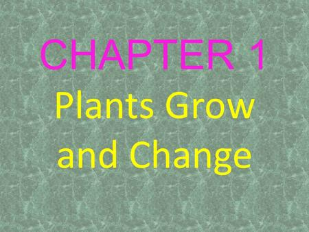 CHAPTER 1 Plants Grow and Change