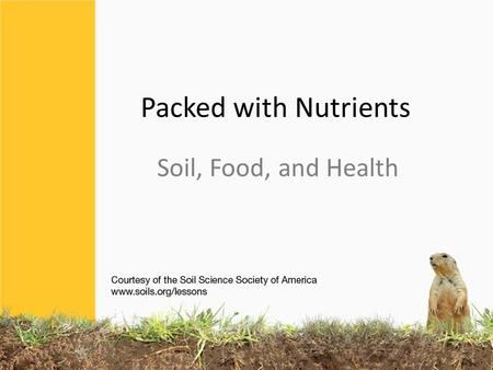 Packed with Nutrients Soil, Food, and Health. SOIL is the ultimate source of nutrients our bodies need Nutrients come from plants growing in soil or from.