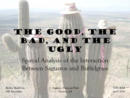 The Good, the Bad, and the Ugly Spatial Analysis of the Interaction Between Saguaros and Buffelgrass Becky MacEwen Saguaro National Park NPS RIM GIS Specialist.