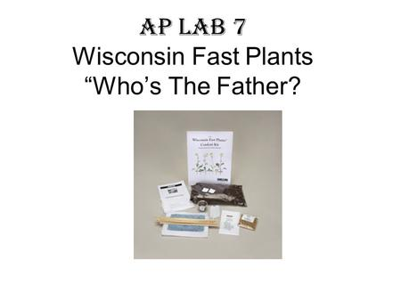 "AP Lab 7 Wisconsin Fast Plants ""Who's The Father?"