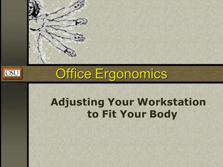 Adjusting Your Workstation to Fit Your Body
