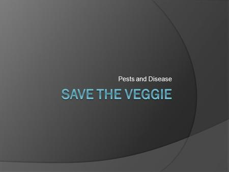 Pests and Disease Save the Veggie.