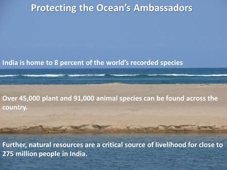 Protecting the Oceans Ambassadors India is home to 8 percent of the worlds recorded species Over 45,000 plant and 91,000 animal species can be found across.