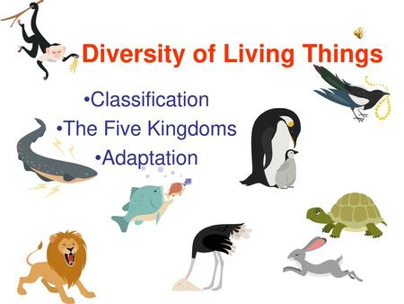Diversity of Living Things Classification The Five Kingdoms