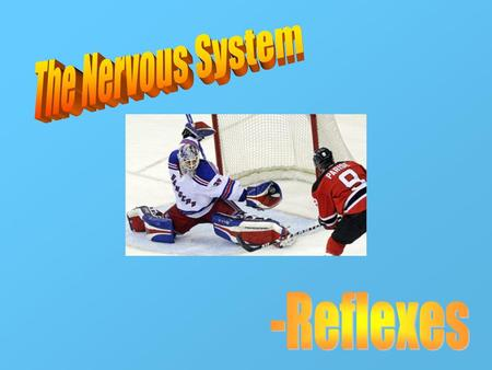The Nervous System -Reflexes.