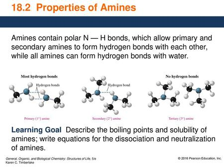 18 2 Properties of Amines Amines contain polar N — H bonds, which