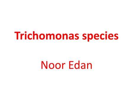 Trichomonas ami fenyeget)
