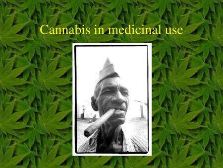 Medical Marijuana Helen Jang, Tara Hooley, David Hoang, Noel