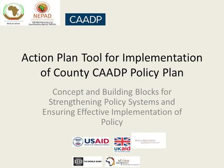 Action Plan Tool for Implementation of County CAADP Policy Plan Concept and Building Blocks for Strengthening Policy Systems and Ensuring Effective Implementation.