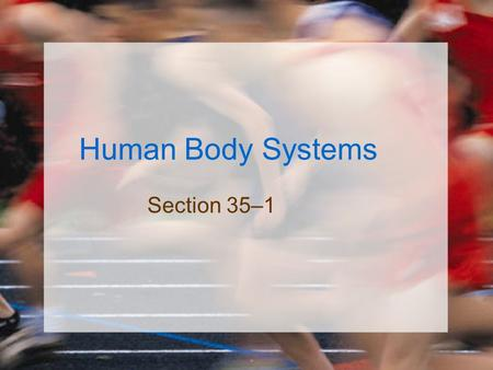 Human Body Systems Section 35–1.