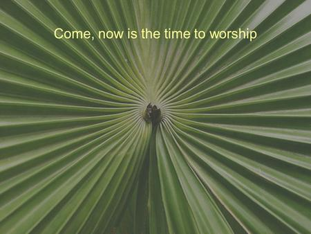 Come, now is the time to worship. Come, now is the time to worship Come, now is the time to give your heart Come, just as you are to worship Come, just.
