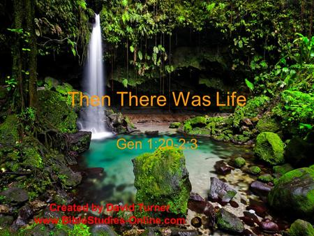 Then There Was Life Gen 1:20-2:3 Created by David Turner www.BibleStudies-Online.com.