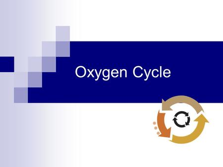 Oxygen Cycle.
