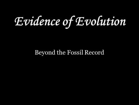 Beyond the Fossil Record