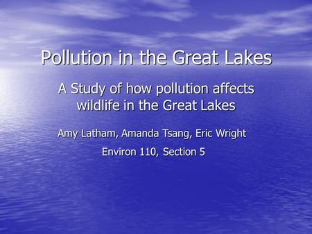 Pollution in the Great Lakes A Study of how pollution affects wildlife in the Great Lakes Amy Latham, Amanda Tsang, Eric Wright Environ 110, Section 5.