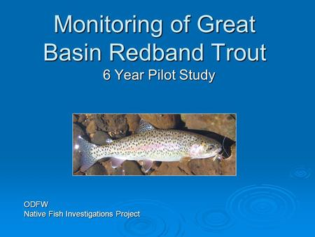 Monitoring of Great Basin Redband Trout 6 Year Pilot Study ODFW Native Fish Investigations Project.