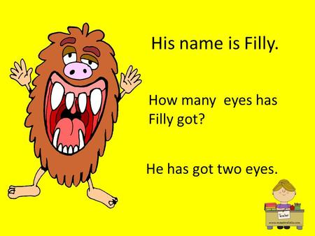 His name is Filly. How many eyes has Filly got? He has got two eyes.