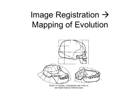 Image Registration  Mapping of Evolution. Registration Goals Assume the correspondences are known Find such f() and g() such that the images are best.