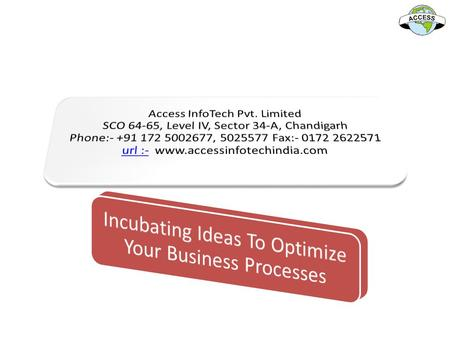 Incubating Ideas To Optimize Your Business Processes