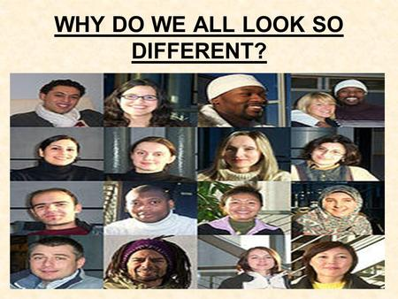 WHY DO WE ALL LOOK SO DIFFERENT?. THINKING ABOUT DIFFERENCES Find someone in the class that looks different to you! 1.Describe how you are similar in.