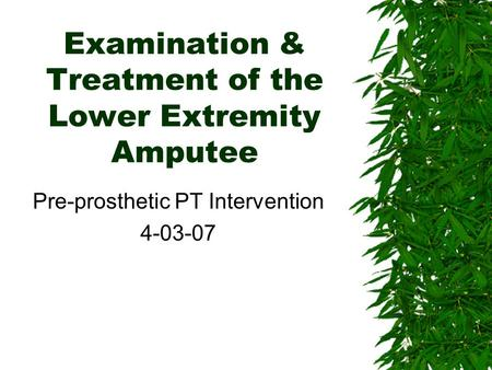 Examination & Treatment of the Lower Extremity Amputee