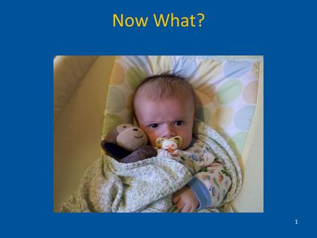 Now What? 1. TEDS Study Translating Evidence-Based Developmental Screening (TEDS) into Pediatric Primary Care –December 2008 through June 2010 –CDC-funded.