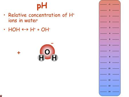 PH Relative concentration of H + ions in water HOH ↔ H + + OH - O HH + - ------- -1 ------- ------- 0 ------- ------- 1 ------- ------- 2 ------- -------
