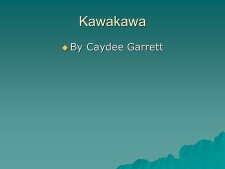 Kawakawa  By Caydee Garrett. Housing Name-The Kawakawa lived in huts. Materials-The huts are made out of willow poles. They also did framework and the.