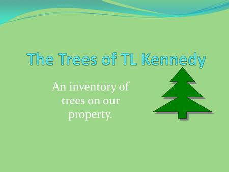 An inventory of trees on our property.. Deciduous Forest Deciduous trees have leaves and they lose their leaves in the winter.