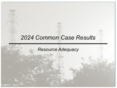 2024 Common Case Results Resource Adequacy.