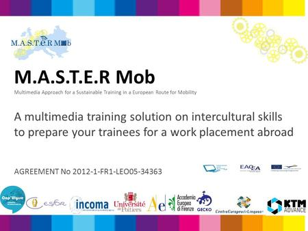 M.A.S.T.E.R Mob Multimedia Approach for a Sustainable Training in a European Route for Mobility A multimedia training solution on intercultural skills.