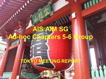 AIS AIM SG Ad-hoc Chapters 5-6 Group TOKYO MEETING REPORT.