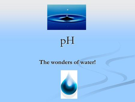 PH The wonders of water!. Acids Any compound that GIVES OFF H+ ions in solution Any compound that GIVES OFF H+ ions in solution Ex. HCl H+ and Cl- Ex.