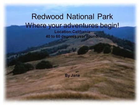 Redwood National Park Where your adventures begin! Location:California 40 to 60 degrees year round. By Jane.