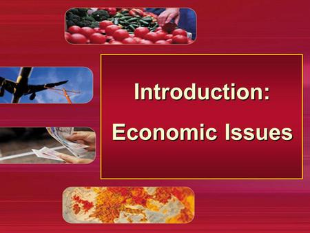 Introduction: Economic Issues Introduction: Economic Issues.