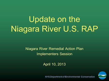 NYS Department of Environmental Conservation Update on the Niagara River U.S. RAP Niagara River Remedial Action Plan Implementers Session April 10, 2013.