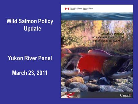 Wild Salmon Policy Update Yukon River Panel March 23, 2011.