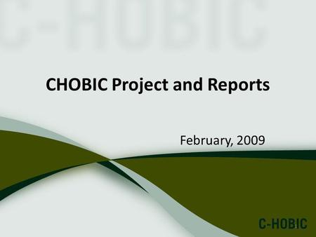 1 CHOBIC Project and Reports February, 2009. 2 Outline C-HOBIC project Reports Utilization of Reports.