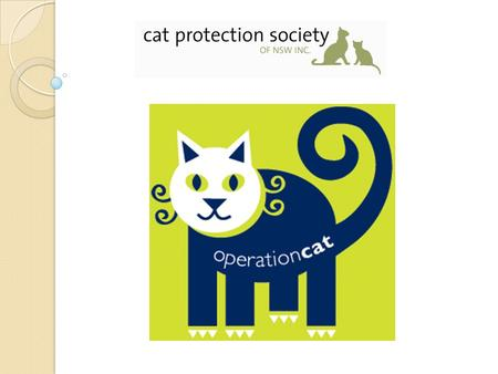 The Cat Protection Society of NSW Caring for cats since 1958 Our vision is that every cat has a loving and responsible home Independent membership based.