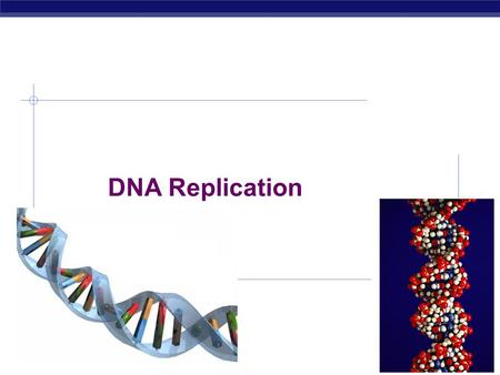"AP Biology 2007-2008 DNA Replication AP Biology Double helix structure of DNA ""It has not escaped our notice that the specific pairing we have postulated."