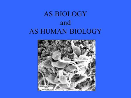 AS BIOLOGY and AS HUMAN BIOLOGY. How is the course structured? AS BIOLOGY and AS HUMAN BIOLOGY  Unit 1 – molecules and cells  Unit 2 – exchange, transport.